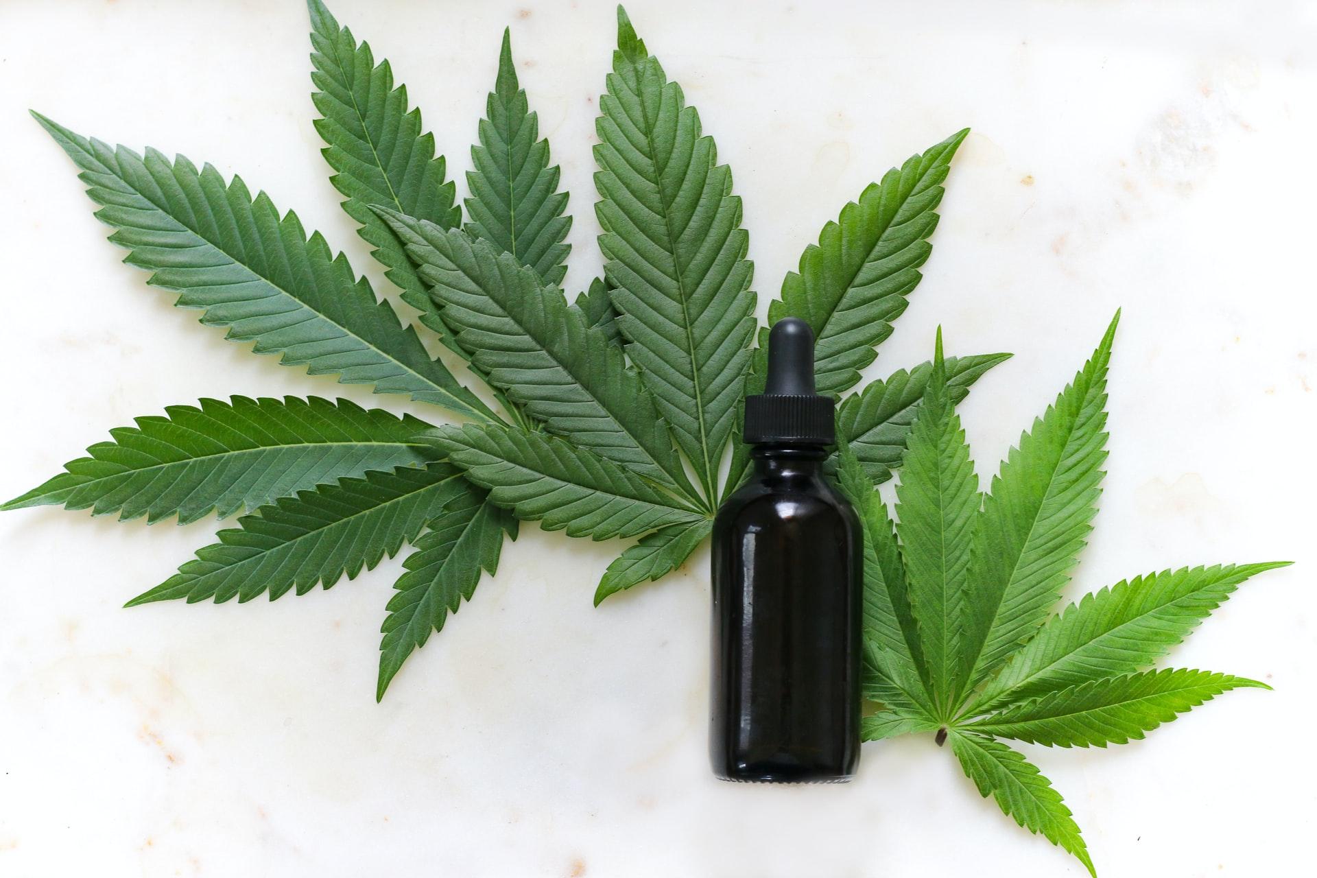 cbd epilepsi cbd olja - Kan CBD hjälpa mot epilepsi?